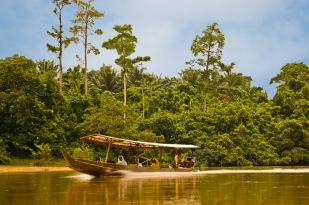 Jungletaxi - Taman Negara, Malaysia