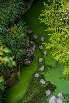 Pond pathway, Quinta da Regaleira - Sintra