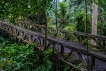 Old Dutch bridge, Ubud