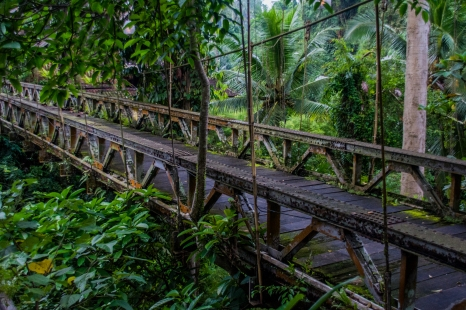 Old Dutch bridge, Ubud
