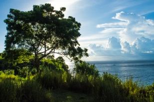 Ocean view - Nusa Lembongan
